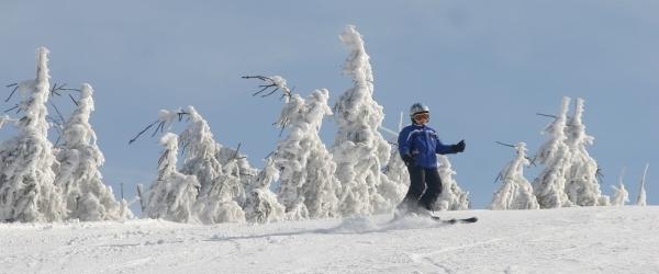 Skifahrer am Seibelseckle