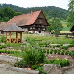 Heil-Kräuter-Garten