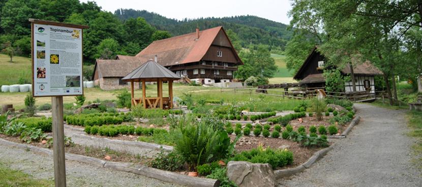 Heil-Kraeuter-Garten-mit-Muehle-830