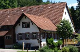 Vogt auf Mühlstein