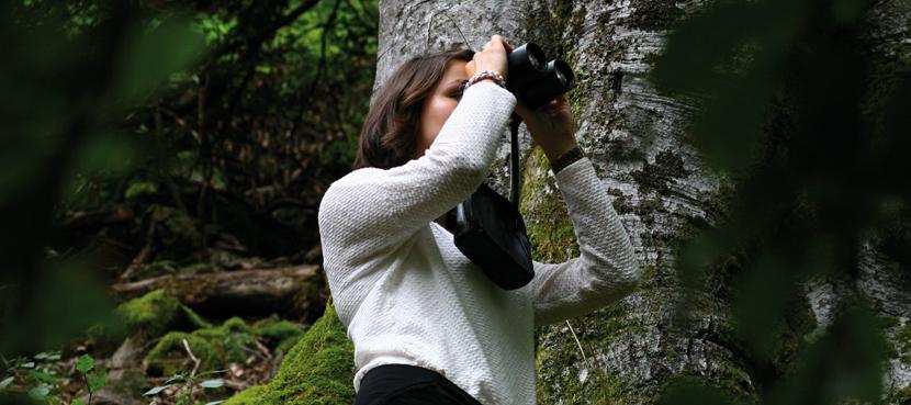 Auf den Wildnispfaden gibt es viel zu entdecken.