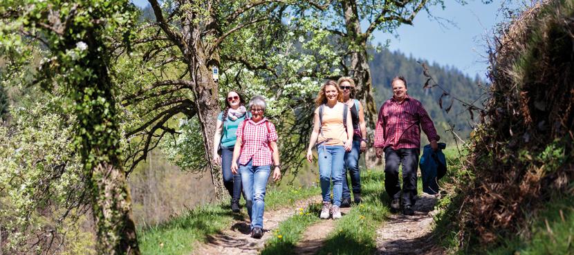 Wandervergnügen auf dem Schwarzwaldsteig