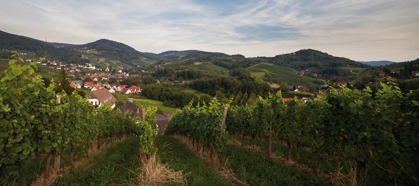 Sasbachwalden-Bild1