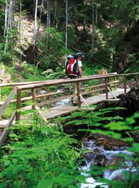 Suedschwarzwald-Bild2