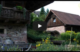 Video Alte Mühle Oberharmersbach