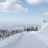 """Das """"Wintermärchen"""" Seebach im Schwarzwald"""