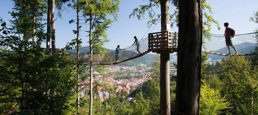 Baumkronenweg Waldkirch©ZweiTälerLand- Clemens Emmler
