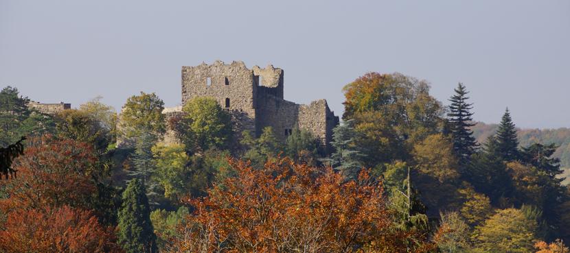 Burg Baden im Herbst - Karin Schmeißer