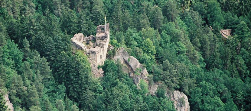 Burgruine Falkenstein Foto: Stadt Schramberg