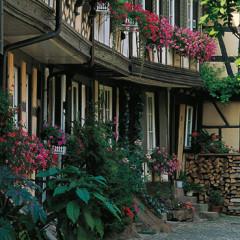 Historische Altstadt mit Engelgasse