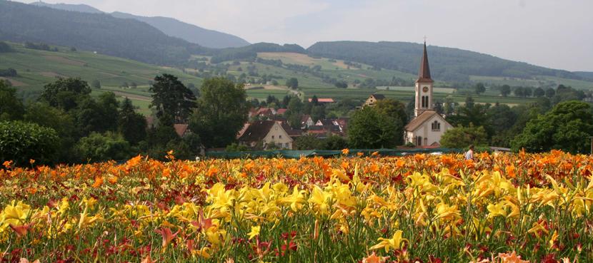 Sulzburg im Markgräflerland