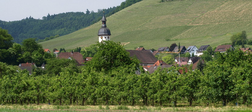 © Schwarzwald-Regioguide