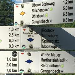 """Hausberge """"Hohes Horn"""" und """"Brandeckkopf"""""""