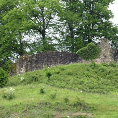 Burgruine Schlössle