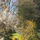 Kinzigtal ist Wärme-Hotspot Deutschlands