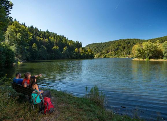 Wanderabenteuer Albsteig Schwarzwald – von Albbruck bis zum Feldbergpass