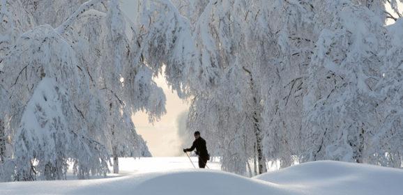 Wintereinbruch im Nationalpark: Loipen gespurt, Wege gesperrt, feste Ruhezeiten für Tiere