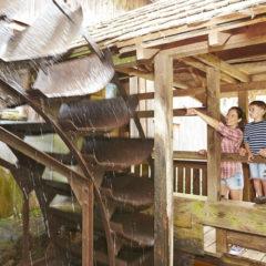 Historische Mühle Glatz