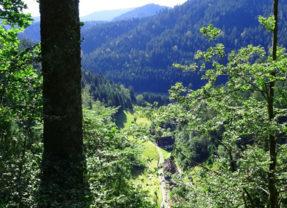 Genießerpfad – Klösterle-Schleife