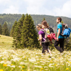 Schwarzwälder Frühlings-Tipps