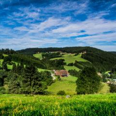 Naturpark-Vespertour
